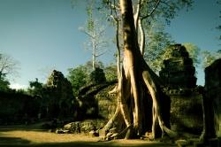 cambodia.054